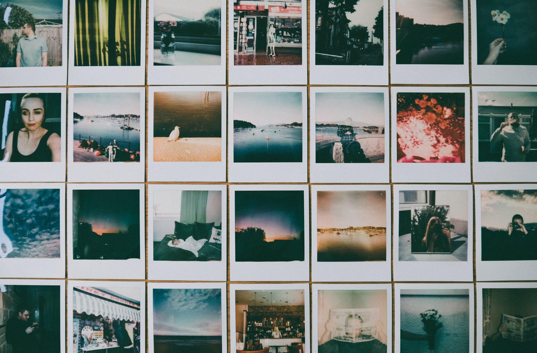 תמונות לרכישה
